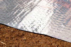 Insulationg crawl spaces with a radiant heat barrier and vapor barrier