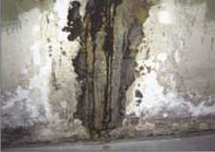 Evidence of efflorescence near floor and on wall - a sign of migrating water.
