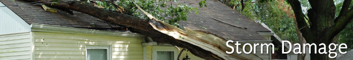 Storm Damage in IN, including South Bend, Chesterton & Portage.