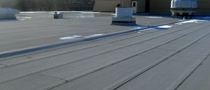 Modified Roofing System