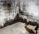 Basement Waterproofing in St Louis