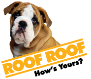 Roof Roof - Greenville
