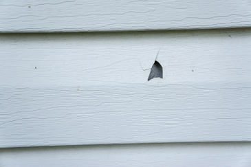 Although vinyl siding can cover the exterior of your home with a durable and attractive layer, there are still some...