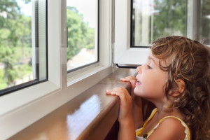 One of the most basic methods of home improvement is through the installation of replacement windows. No matter how insignificant...