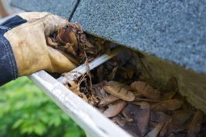 It is uncommon and almost impossible to find a house without a gutter. Gutters collect rain water and divert it...
