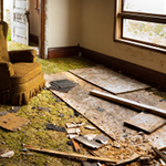 Water Damage Restoration in Central Florida, Clearwater, Saint Petersburg, Tampa