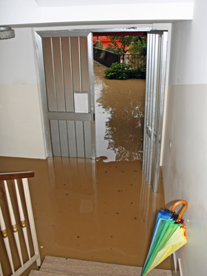 Floodwater in Tampa home