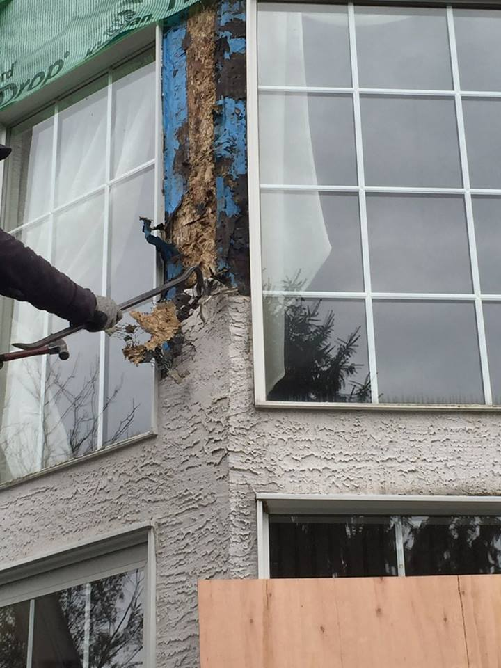 Examining The Significant Differences Between Stucco
