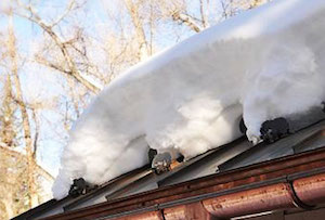 Metal roof snow guard