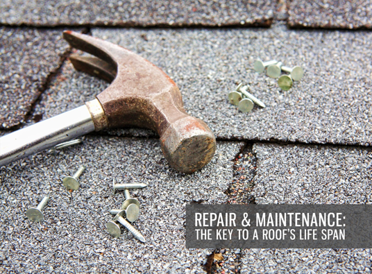 Roof repairs do more than just fix the damage and prevent things from becoming worse. It extends the life of...