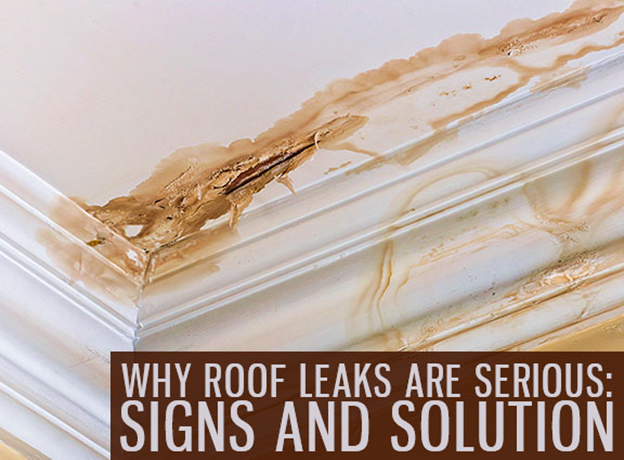 why roof leaks are serious signs and solution