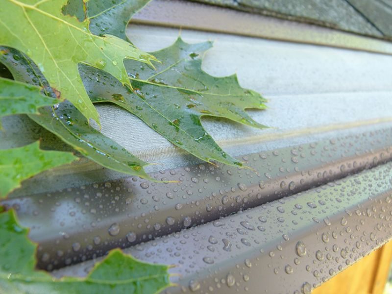 Gutter cleaning: it's one of the most unpleasant chores of being a homeowner. If you have old gutters, you probably...