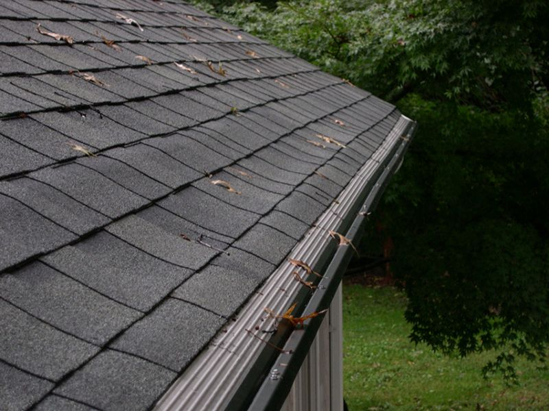 Along with having gutters and downspouts around your house, you may also want to consider installing a leaf guard in...