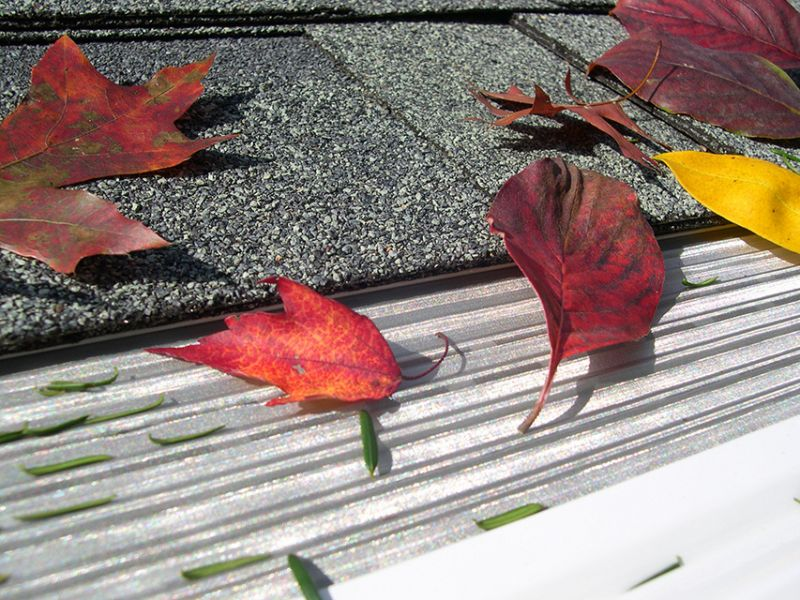Gutters are renowned for getting clogged by rain, leaves and debris. Often, this leads to foundation damage or rotting wood....