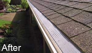 Gutter in Portland with MasterShield gutter guard