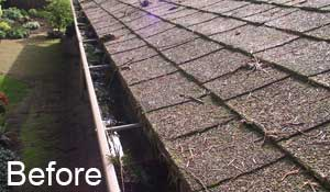 Gutter in Portland before MasterShield