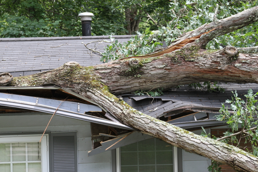 Rapid Roofing offers disaster restoration and storm damage recovery in Michigan