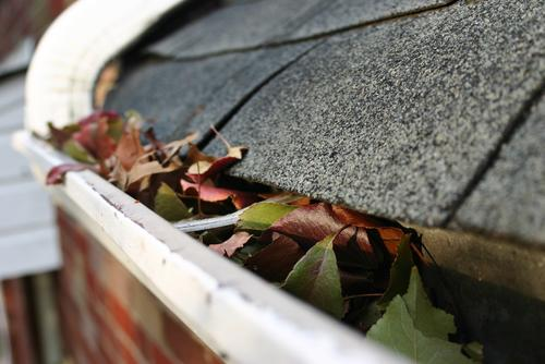 Keep your gutters clean with our gutter guards