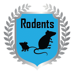 Rodents Plan badge