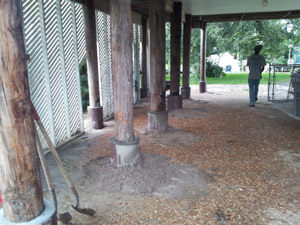 Timber Pile Repair In Northern Florida Concrete Pilings