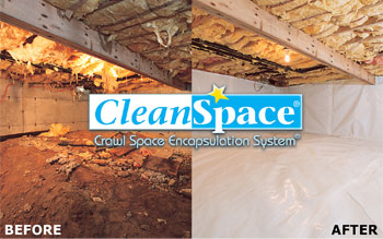 CleanSpace® Before After