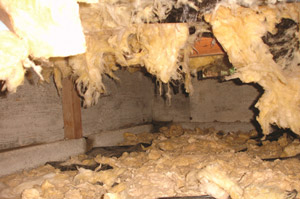 Sagging Wet Crawl Space Insulation