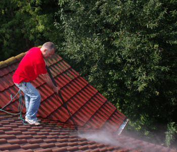 Roofing Cleaning