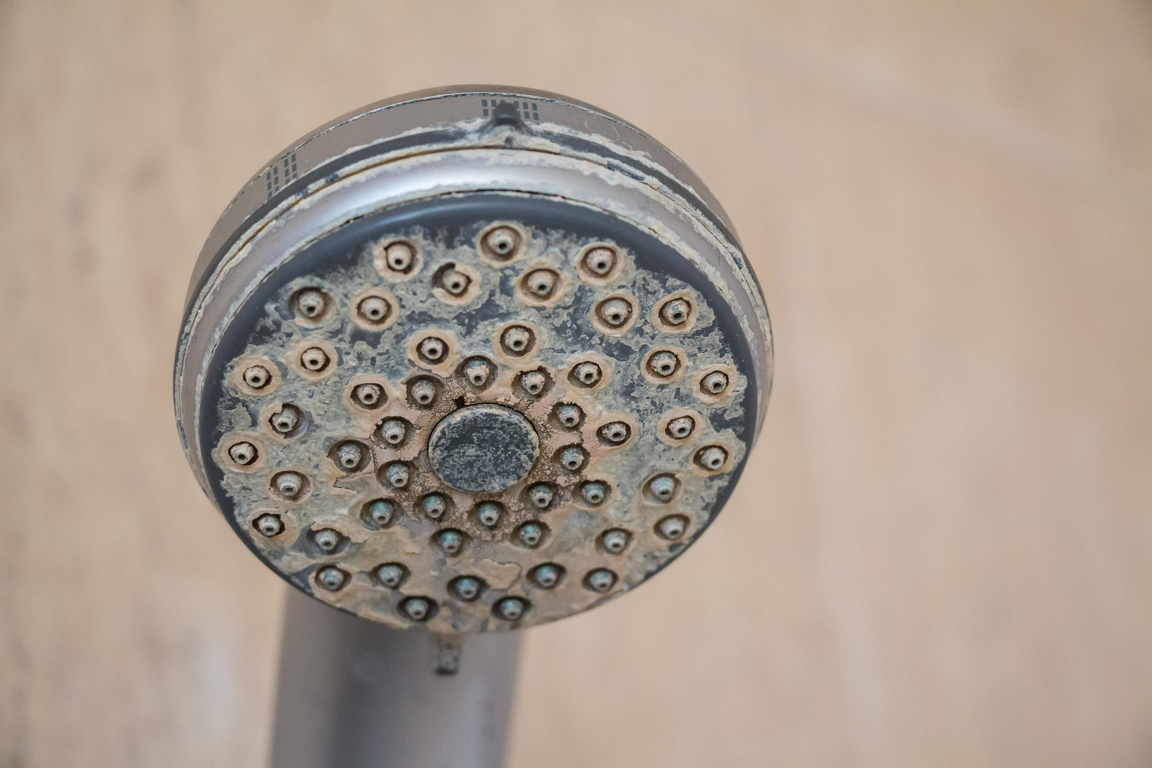 [showerhead buildup]