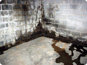 Water leaking through a cinder block basement wall