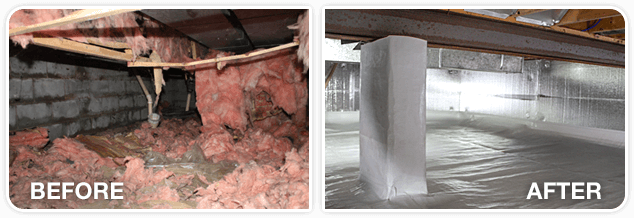 Encapsulate Your Crawl Space With Our All In One Solution