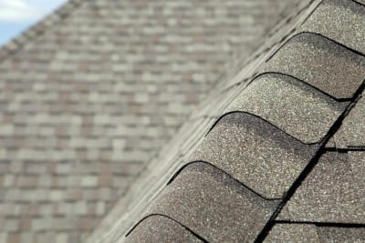 5 Warning Signs You Need a New Roof - Image 1