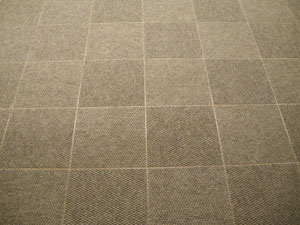 Patterned ThermalDry® Carpet