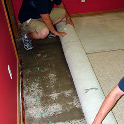 Water-damaged carpet installed on a basement floor.