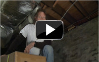 Dr. Energy Saver can help eliminate mold in your home