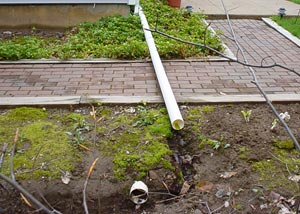 A gutter downspout extension causing a serious problem in the landscaping and along a walkway
