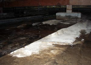 A vented crawl space that's showing advanced signs of mold, rot, and water damage
