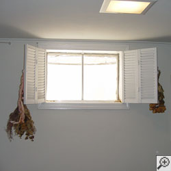 A basement window, bright with light flooding into a remodeled basement.