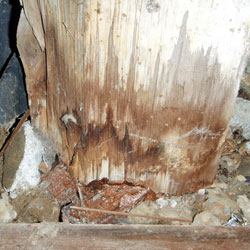 A wet, rot-damaged crawl space support post in contact with the dirt floor.