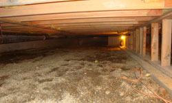 A nasty, mouldy crawl space in Langford, British Columbia