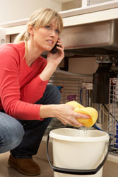 Emergency Plumbing Repair in Lockport