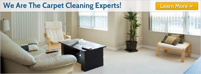 We are the Montana Carpet Cleaning Experts!