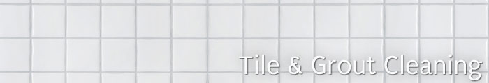 Tile and Grout Cleaning in MT, including Bozeman, Great Falls & Helena.