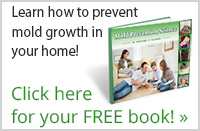 FREE Mold Growth Prevention Book from United Services