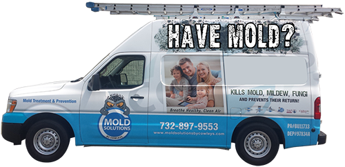 Toms River Woodbridge Cherry Hill NJ Mold Removal & Mold