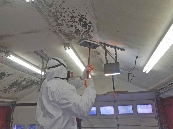 Garage ceiling mold removal in Central NJ