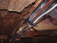 Crawl space rot in St Catharines