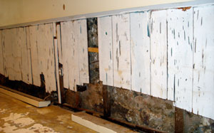 Organic material in a basement can cause mould growth when moisture is present