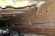 /crawl-space-repair/support-beam-jacks.html