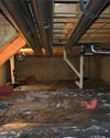 A musty, rotting vented crawl space in Jacksonville