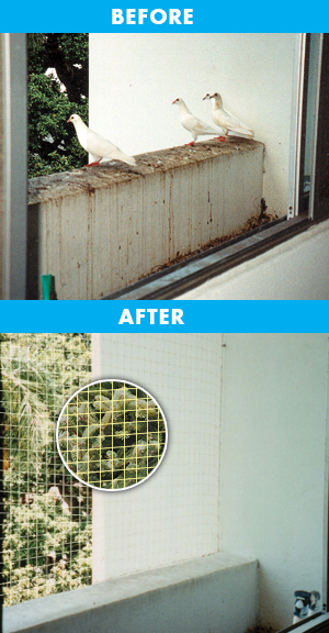 balconybeforeafter